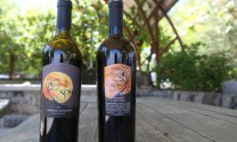 Sova Wines